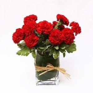 10 carnations floral arrangement
