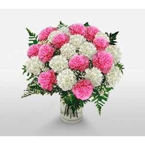 Carnations vase arrangement