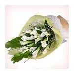 20 stalks calla lillies