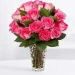 18 pink pearl roses in vase