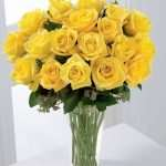 18 yellow roses in vase