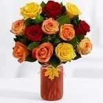 One dozen antum roses