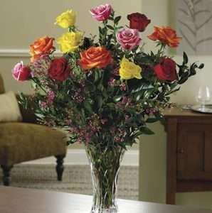 Magnificant mixed dozen roses