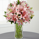 Mixed lilies in  a vase