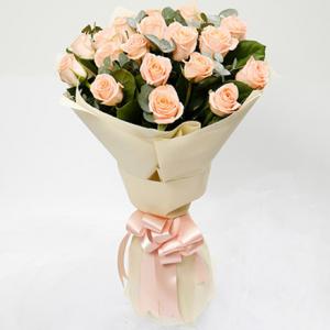 20 Peach colour roses